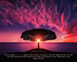 Bible Scripture Picture John 8:12 (8X10) New Fine Art Print Photo Verse ... - $4.99