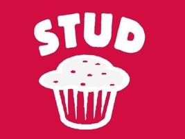 FUNNY TSHIRT Stud Muffin T-Shirt Baking Muffin Tray Mens Womens Kids Tee Shirt - $11.99
