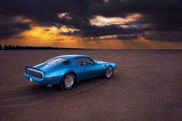 1979 Pontiac Trans Am 24 X 36 INCH POSTER, classic muscle car, blue, rear - $18.99
