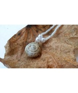 Holy Terra necklace: Natural white snail shell with white beadwork - $39.00