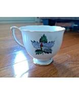 Vintage Queen Anne Bone China Tea Cup - Rare Pattern - Fisherman, Lake, ... - $8.99