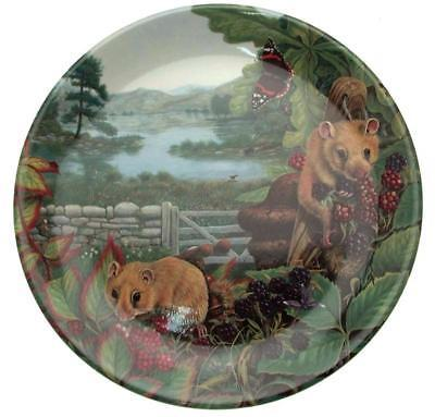 Davenport Secret Life of the Farm Dormice in the Hedgerow Steve Holden Plate