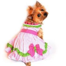 Watermelon Dog Dress - $49.99