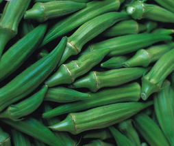 300pcs Okra Dark Green Shot Gumbo Vegetables Seeds,Very Tasty Edible IMA1 - $17.99