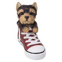 Pacific Giftware PT All Star Animal Yorkie Puppy Dog in The Shoe Decorative Resi - $34.64