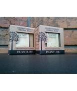 Plantlife ROSEMARY TEA TREE 2 Aromatherapy Herbal Bar Soaps pair 4oz eac... - $11.83