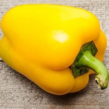 25 Seeds Canary Yellow Sweet Bell Pepper, NON-GMO, Heirloom - $6.93