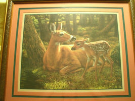 Home Interiors Homco Forest Doe Fawn Deer Framed Print 27 x 23 Wall Decor - $120.00
