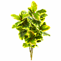 """40"""" Rubber Leaf Artificial Plant (Real Touch) (Set Of 2) - $62.70"""