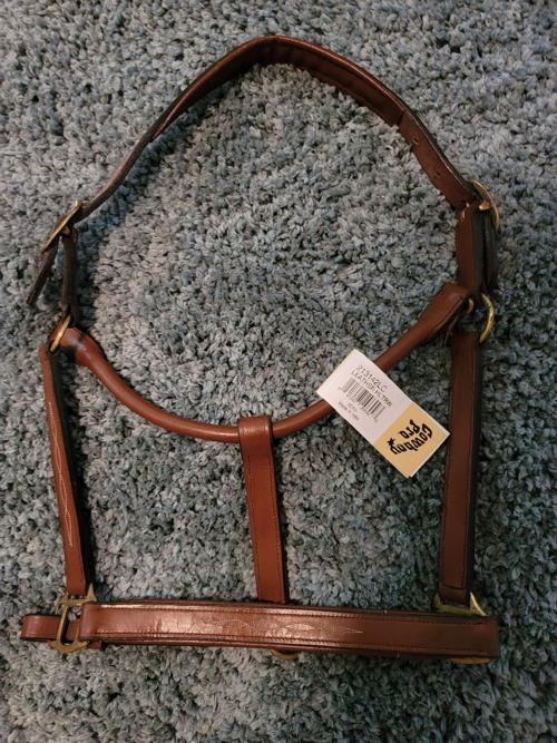 Leather halter