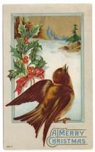 Christmas Bird Wooded Scene Robin Holly Lightly Embossed Vintage Postcard 1917 - $4.99