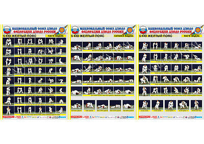 Primary image for Posters JUDO. Yellow  belt  1+1+1 poster.The technique of judo.1