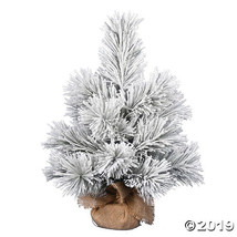 "Vickerman 24"" Frosted Beckett Pine - $85.25"