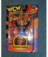 WCW Power Punch Raven 1998 Original San Francisco Toymakers New - $18.99