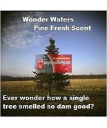 16- Wonder Wafers Mountain Pine Scent~Amazingly Fresh~ Air Freshener - $8.15