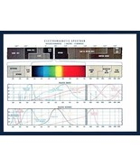 Westinghouse Electromagnetic Spectrum Fold Out Chart Diagram Lighting 19... - $14.99