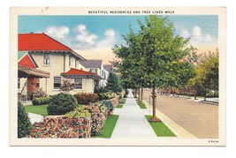 Small Town View Beautiful Residences Tree Lined Walk Vintage Linen Postcard - $4.99