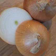 SHIP FROM US YELLOW SWEET SPANISH ONION SEEDS ~8 Oz PACKET SEEDS - NON-G... - $98.36