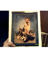 German Shepherd Plate - $25.00