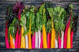 1850 Seeds 1 OZ Rainbow Swiss Chard Seeds, NON-GMO, Heirloom - $15.84