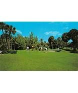 POMPANO BEACH, FL Florida  HILLSBORO GOLF CLUB  3rd Green~Golfers  1978 ... - $6.92