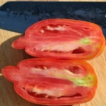 25 Seeds of Speckled Roman/Striped Tomato - Lycopersicon Lycopersicum - $21.09