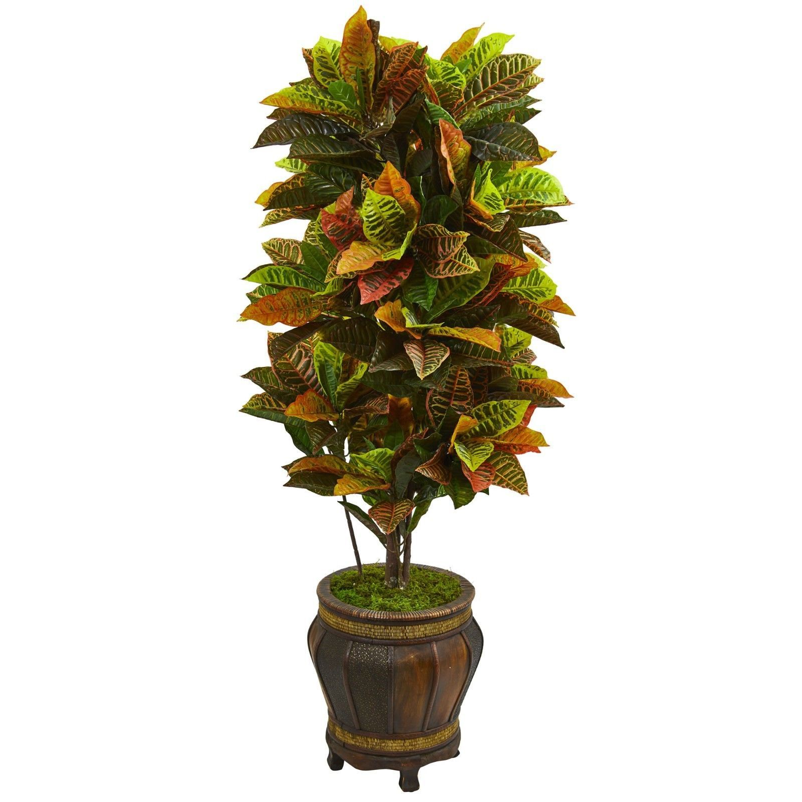 5.5' Artificial Croton Plant In Decorative Planter (Real Touch)