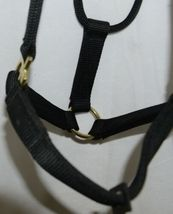 Valhoma 580QBK Black Small Horse Halter Five Hundred Eight Hundred Pounds image 3