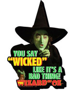 The Wizard of Oz Wicked Witch You Say Wicked... Chunky 3-D Die-Cut Magne... - $5.94