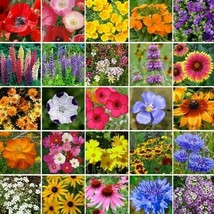 SHIP From US Wildflower Southeast Mix Seeds (7g+Seeds) UTS2 - $24.99