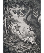 HUNTING Pheasants in Forest Spaniel Dog - 1878 Fine Quality Print - $40.46