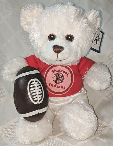 Steven Smith 900KR CIDCO Shattuck Indians 9 Inch  Football Bear