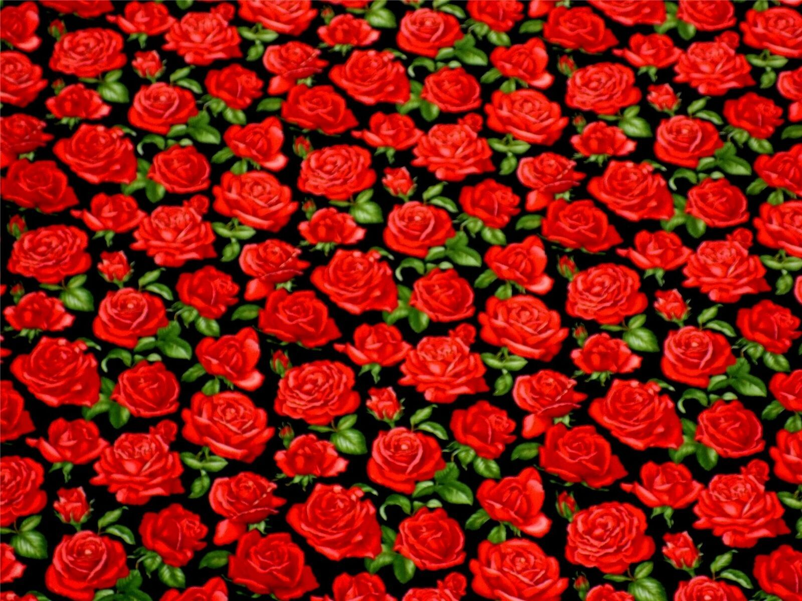 Roses Black Red 100% Cotton High Quality Fabric Material 3 Sizes