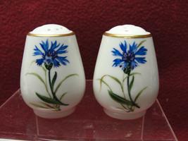Rosenthal China - Aida Shape With Cornflower - Individual Salt & Pepper Shakers - $38.95