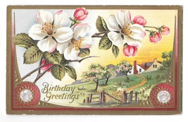 Birthday Greetings Country Scene Apple Blossoms Embossed Gilded TP & Co Postcard - $6.69