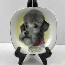Decorative Plate Gray Poodle Dog Enoch Wedgewood Tunstall   - $32.73