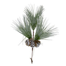 """18"""" Long Needle Frosted Pine Spray With Pinecones - $24.95"""