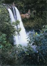 Wailua Falls (Kauai Hawaii) by Barbara Snyder 8 x 10 Photo Signed By  Artist - $19.79