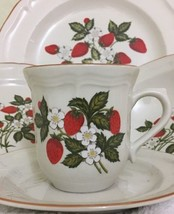 Fruit Garden Stoneware 5 Piece Place Setting Service For 1 - $29.69
