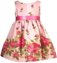 Rare Editions Baby Girl 3M-24M Pink Rose Floral Border Shantung Dress