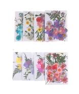 1bag Dried Flowers Leaf UV Resin Decoration Natural Floral Sticker 3D Dr... - $3.99+