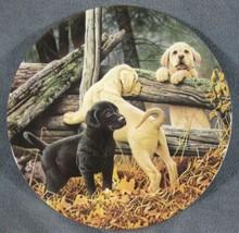 Little Rascals Collector Plate 5th Dog Days Jerry Gadamus Puppies Dogs B... - $19.95