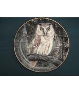 TENGMALM'S OWL collector plate NIGHT WATCHMAN Trevor Boyer OWLS Danbury ... - $19.95