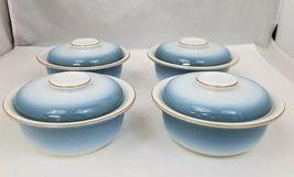 Nikko Gradiance Cereal Soup Bowl Lid Set of 4 Azure Leafette Dish Microwave Safe image 10