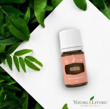Young Living Essential Oil Ocotea Pure Original 5ml New !!! EXPEDITED SH... - $53.90