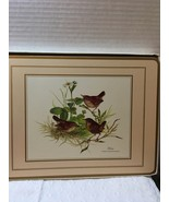 Vintage Pimpernel Traditional Placemats European Birds   - $12.00