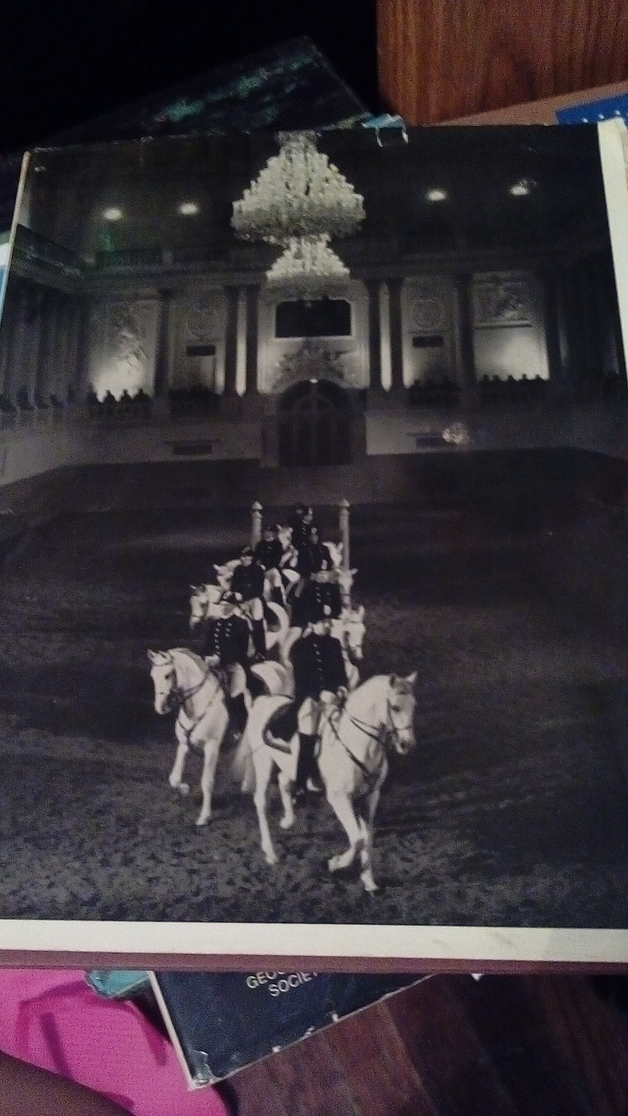 The white stallions of Vienna by Alois Podhajsky jvc140