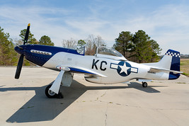 2005 Thunder Mustang For Sale in Troy, Alabama 36079 image 3