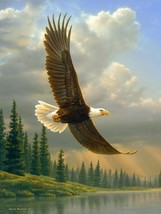 """American Heritage Collection, """"Eagle"""" Raschel Throw Blanket by The Hautm... - $982,59 MXN"""