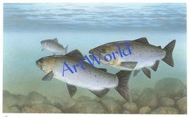Digital download,Salmon fish,Art,Photography,Christmas decor,Wall art,Pr... - $4.50
